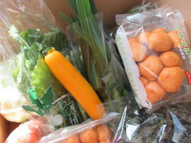 Oyakodoふくしまさんより☆お野菜を届けて頂きました!